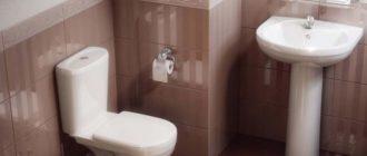 Унитаз в интерьере ванной