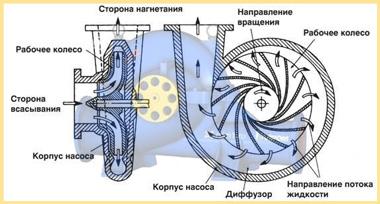 Строение центробежного насоса