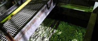 методом можно извлекать из воды даже нефтепродукты
