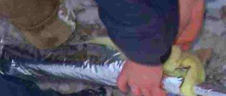 Как защитить трубы при низких температурах